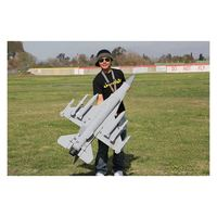 Middle Plane Good Price F16 RC Jet Hobby
