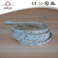 Good quality CE ROHS 12v 5 meter holiday time led ribbon