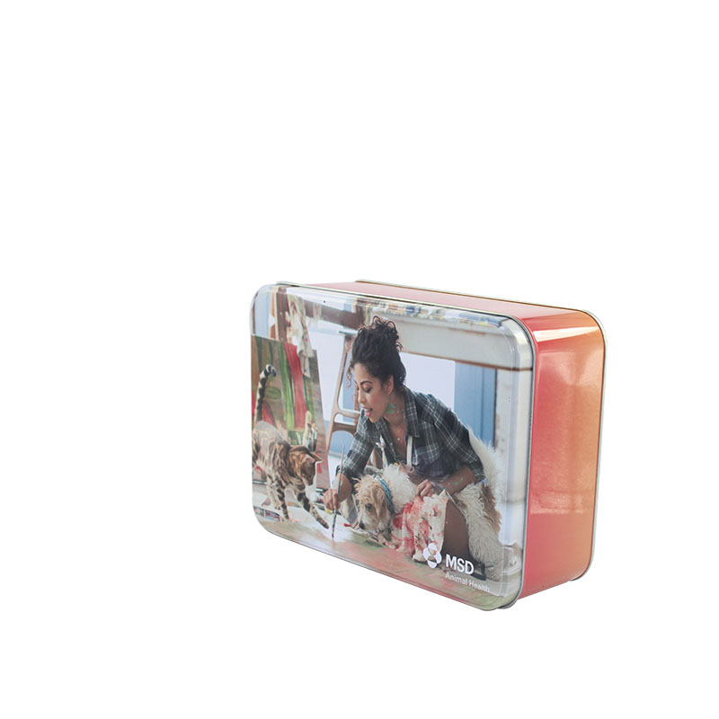 Custom Printed Tin Box For Gift Package Tin Cans For Food Canning