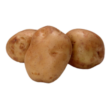 Holland potato price