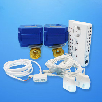 Professional Automatically Home Water Leakage Detector with 6m sensor cable