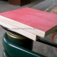 Cheap Plywood Construction Real Estate Poplar