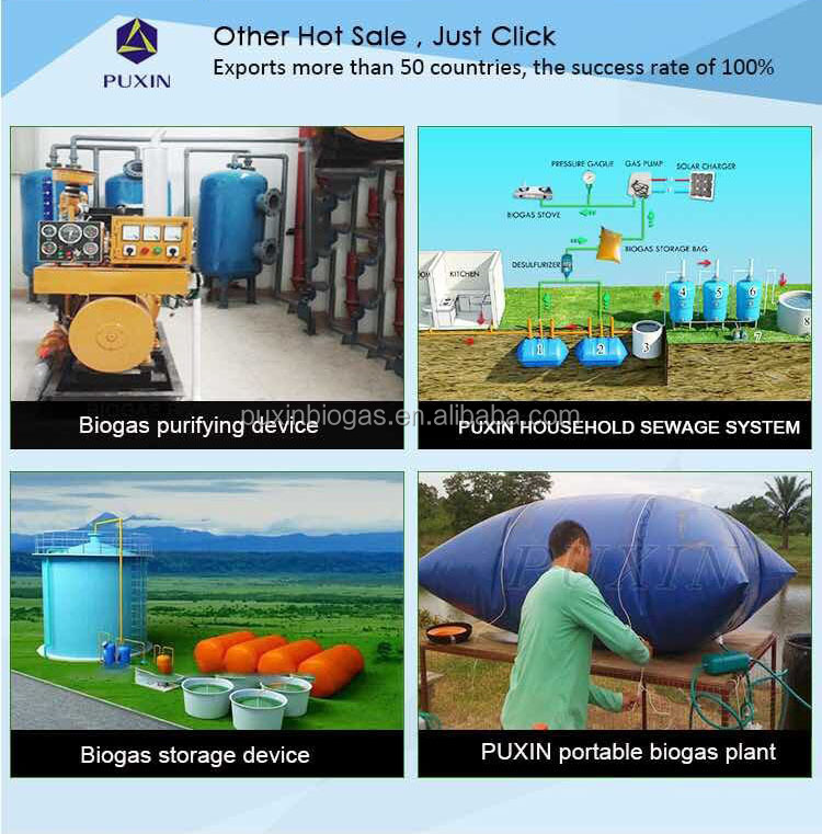 PUXIN portable biogas machine/system for food waste composting machine