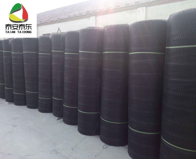 HDPE drainage geonet price in China