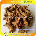 Galangal/Red Ginger/natural herbs/spice/seasonings/condiments