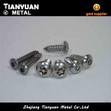 Made in china hdg pan head self tapping screws torx with screw tap