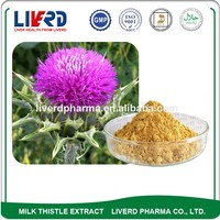 Hot Sale P.E. Thistle Extract Powder for Liver Repair