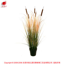 Dongugan Factory Direct Sale Artificial Grass Onion Grass with Cattails in Pot Synthetic Potted Grass Pots Plant
