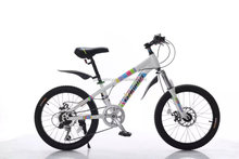steel frame 20 inch mountain bike MTB for kids