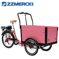 Old Fashion Front Load Electric Cargo