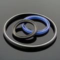 Different type PTFE Spring loaded Seals