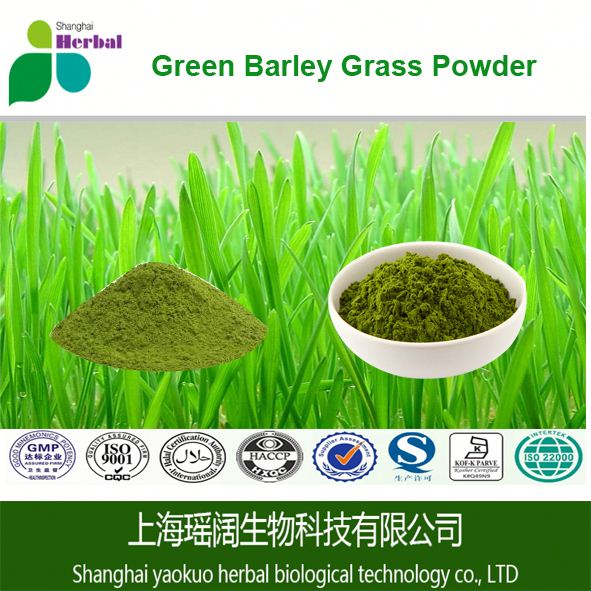 China products superfoods green barley powder grass barley powder for health products