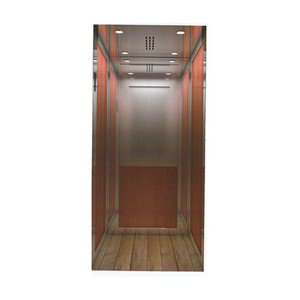 Villa Residential Elevator Cheap Small Home Lift
