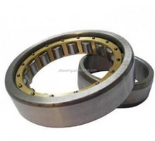 SL045005-PP full complement cylindrical roller bearing