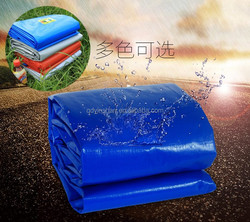 Waterproof Plastic Tarps Blue Camping Tarp for Shelter
