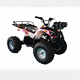 Cheap Price Free Style New Model Beach Racing Rides ATV Battery-Operated Adult Electric Quad Bike