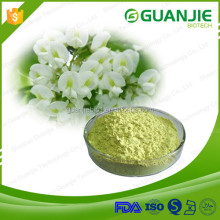 13 years manufactory supply high quality sophora japonica extract 98% rutin powder