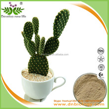 ISO & Kosher & Halal manufacturer supply Prickly Pear Juice Seed Extract/cactus plant for lose weight