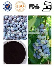 Low Heavy Metal bilberry plants for sale