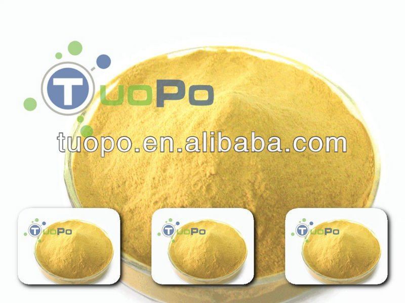 High protein enriched dry yeast powder