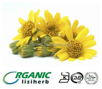 Natural Arnica Montana extract / Arnica extract Ratio 10:1 20:1 powder