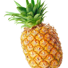 Chinese fresh pineapple fresh for sale with best price export