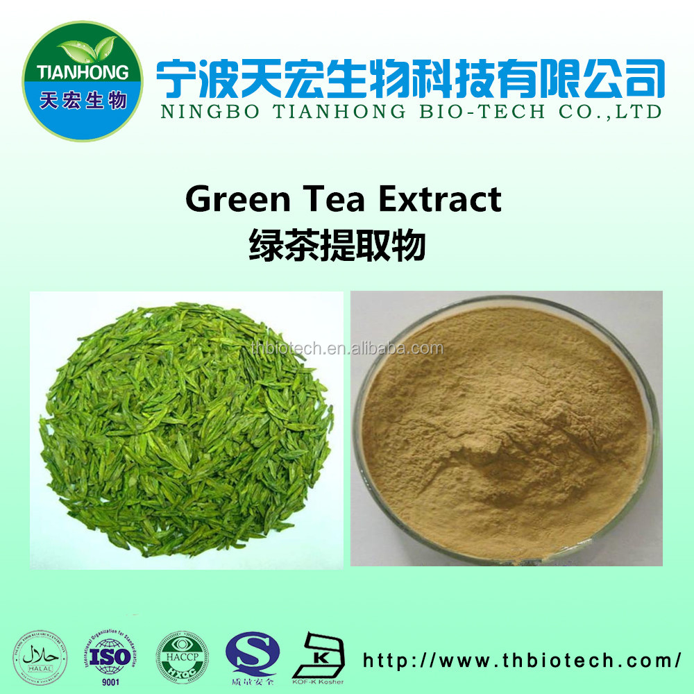 100% pure natural green tea extract 95% tea polyphenols instant green tea