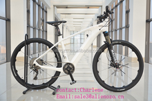 500W 750w 1000W bofeili motor fat tire mountain electric bicycle germany design/hidden battery 48v electric fat bike