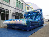 Inflatable dolphins slides, giant inflatable double lanes slip slides, inflatable waving water slide