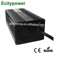 Ecitypower electric car battery battery 12V EV charger