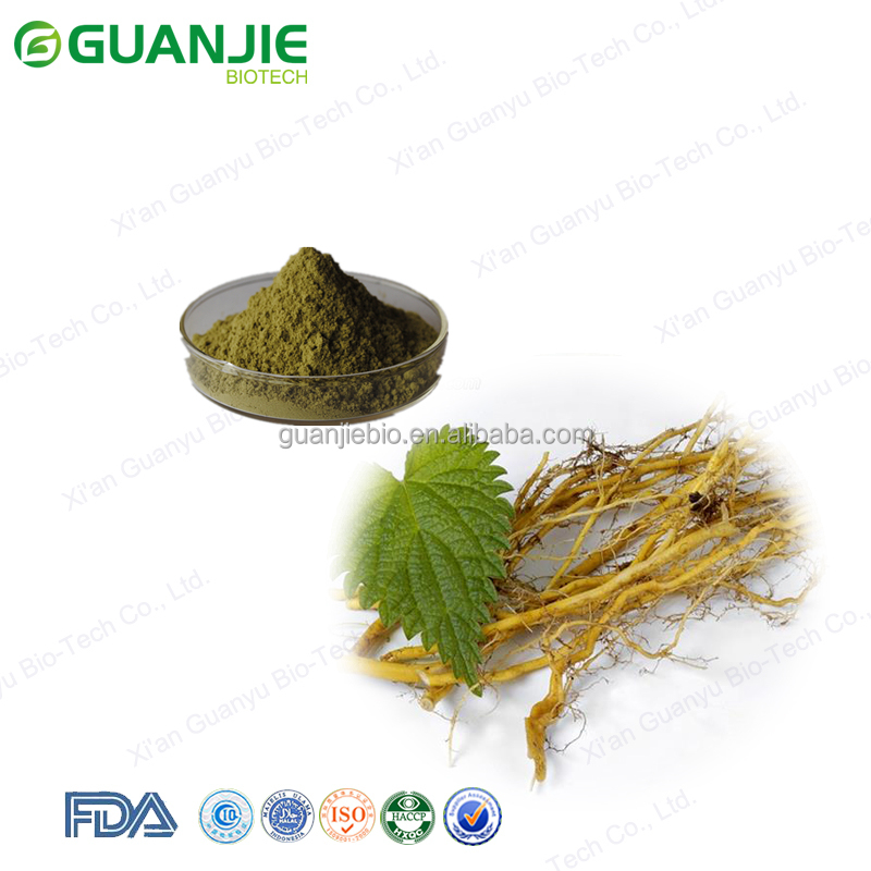 low price Nettle Extract/100% Natural Nettle Root Extract Powder