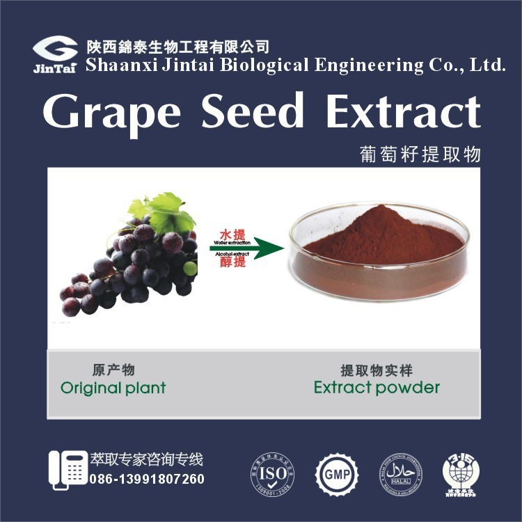 Plant extracts Grape Seed P.E. Grape Seed Extract powder