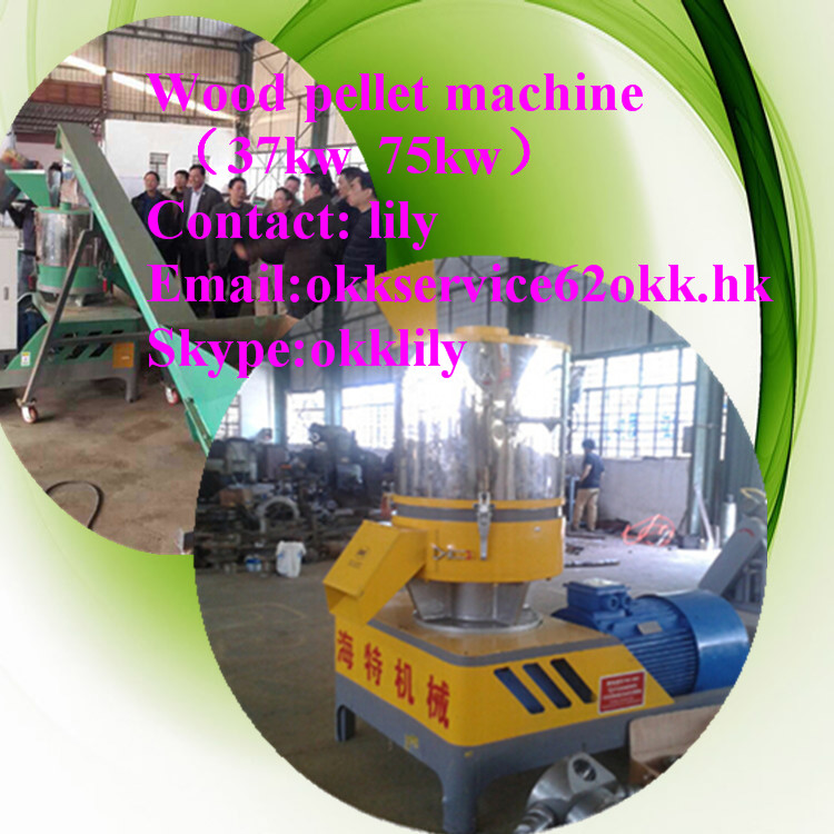 Energy saving wood pellet mill for selling/small wood pellet line pellet press mills for sale