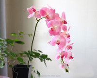 High simulation butterfly orchid a plastic handle Great branches 11 head simulation flowers/wedding decoration