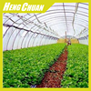 China Cheap Agricultural Green House