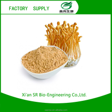 SR Hot Sale High Quality Natural Cordyceps Sinensis Extract Powder / Winter Worm Summer Herb