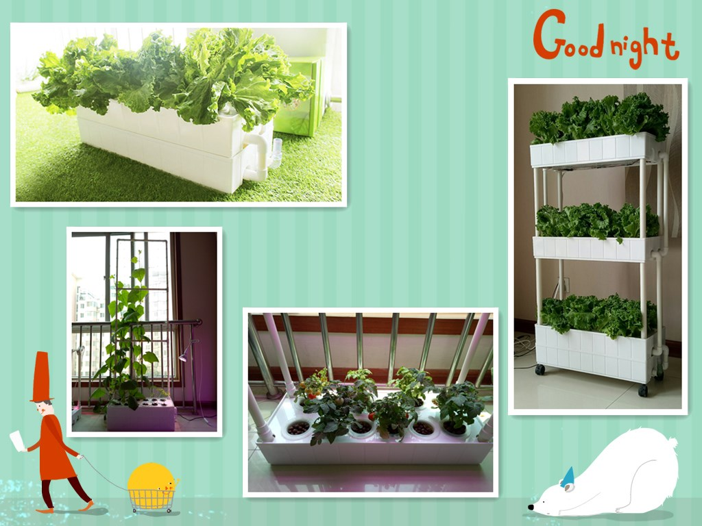 OEM Self Watering NFT Hydroponic Plastic Plant growing box container
