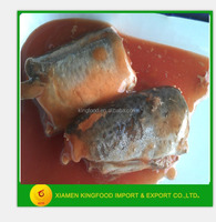 155g good quality canned horse mackerel in tomato sauce exporter