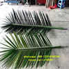 Q011405 Kinds Of Artificial Palm Tree