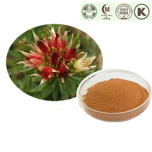 Herb Medicine Rhodiola Rosea Extract With Free Sample