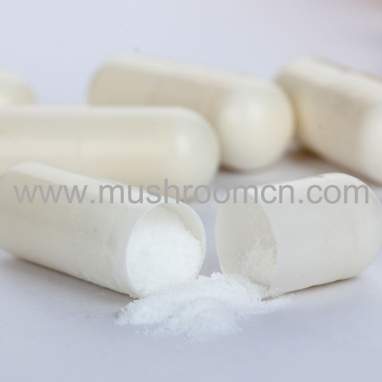 High Quality best price Anti-Aging Collagen powder