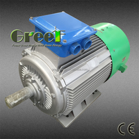 HOT!Low speed permanent magnet generator, low rpm electric generator