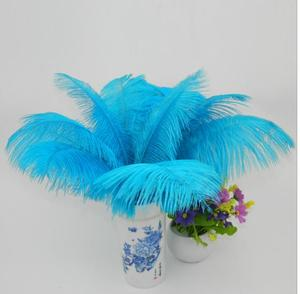 High Quality Washed White Duck Down rooster feather Sale party ostrich feathers for wedding centerpiece