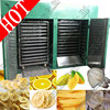 Very popular!! low price freeze fruit drying machine