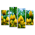Golden Tulip Flower Painting on Canvas Modern Photography Printing Art 4 Panel Giclee Print Living Room Wall Decor
