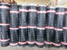 hot sale 1.5mm thickness torched applied sbs modified bitumen waterproof