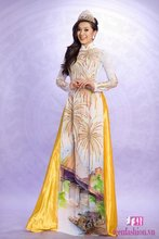 Viet Nam Ao Dai Dress