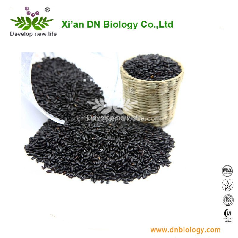 black rice anthocyanidin 5%~25% Black Rice extract bodybuilding supplements