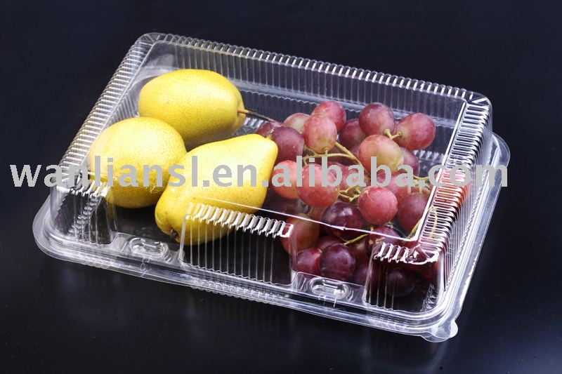 Clear Hinged Food Container