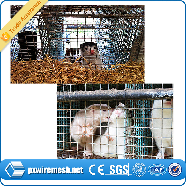 Steel Wire Cage For Mink Farming Mink Cage For Sale Buy